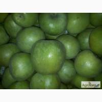 Продаєм яблука у великій кількості різних сортів