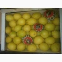 Продём лимоны