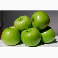 Продам оптом яблука, сорт Семиренко