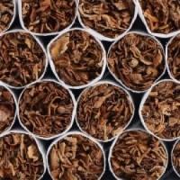 Продам Болгарский табак