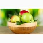 Куплю яблоко от производителей. Первый, второй сорт. Звоните