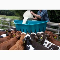 Сухое молоко Лактивит молочная смесь корм