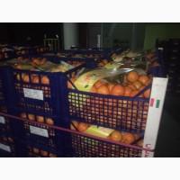 Продам мандарины Турция Испания