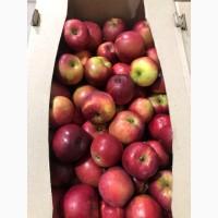 Реалізовуємо яблуко