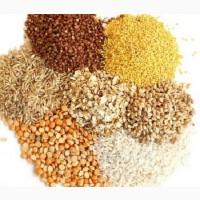 Реализуем продукты питания оптом и в розницу Днепр