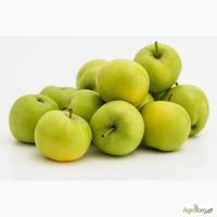 Закупаем яблоко на промпереработку оптом, дорого