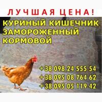 Кишечник куриный, кормовой, замороженный в брикетах