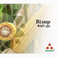 Семена кукурузы Визир, ФАО 350