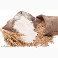 Мука пшеничная оптом высший сорт в/с