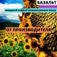 Семена подсолнечника гибрид Базальт F1