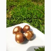 Продаємо перепелині копчені яйця власного виробництва