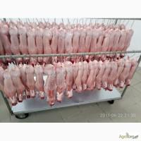 Продам мясо кроля