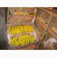 Продам бананы оптом