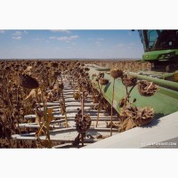 Уборка сои подсолнечника соняшника кукурузы льна Херсон Берислав Великая Александровка
