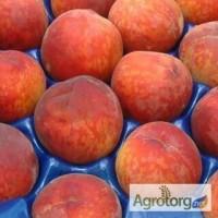 Продам персик Испания Греция Турция