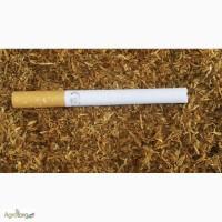 Продаем очень хороший табак. трапизонд берлей средняя крепость гильзы машинки бумага