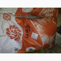 Продажа Limagrain 55.80 мешок (10.98 кг) 128 $