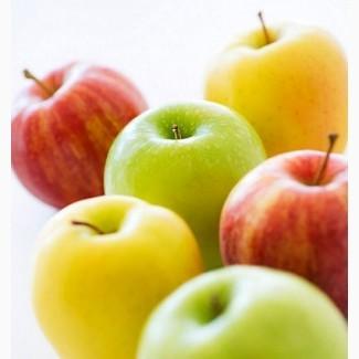 Куплю яблоко оптом от 20т