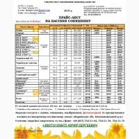 Семена подсолнечника РЕЙНА 95-100 дн. (May Agro Seed) (Турция)