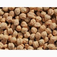 Семена гречихи Дикуль, Даша, ячмень Даллас 1я реп-ция, нут Иордан, пшеница