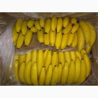 Продам бананы оптом и в розницу