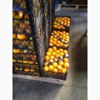 Продам мандарины первый сорт