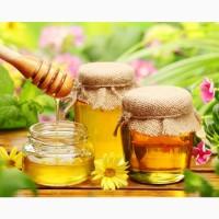 Куплю МЕД бджолиний, Віск в Полтаві та області