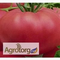Продам пакетированные семена томата ( с первых рук, оптом от производителя)