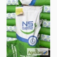 Сербские семена подсолуха и кукурузы НС-2017, НС-6043, Рими, Прими, НС-2014, НС-101 и др