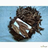 Лист табака