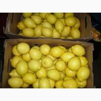 Продаем лимоны оптом, мелким оптом
