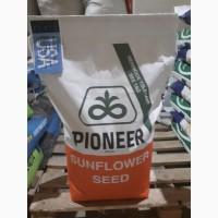 Семена подсолнечника Пионер P64LE99 Пионер 99 USA ОРИГИНАЛ