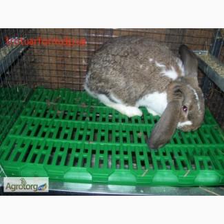Пластиковые щелевые полы-трапы для кроликов