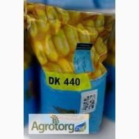 Кукурудза ДК 440