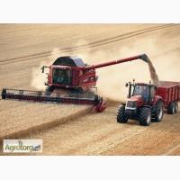 Уборка комбайнами урожая зерновых Киев, аренда комбайнов на уборку зерна