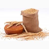 Крупа пшеничная оптом и в розницу
