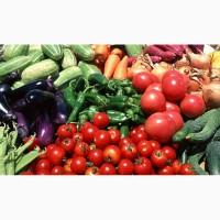Куплю овощи, весь суповой набор, большими обьёмами