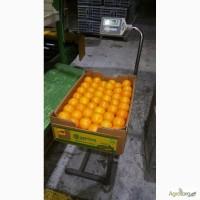 Апельсины из Кипра