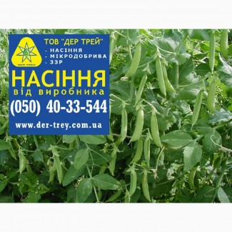 Семена Гороха, посевной горох, посевной материал. Горох