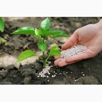Селитра, карбамид, азофоска, КАС-32, нитроаммофоска и другие удобрения