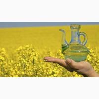 Куплю урожай масличных: подсолнечник