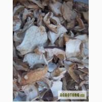 Продам білі сухі гриби оптом