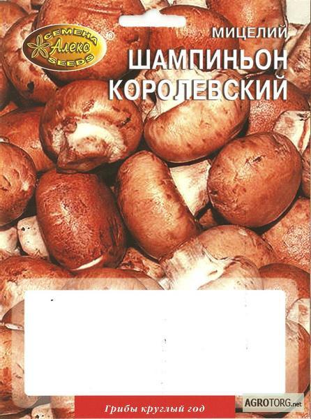 Киевская обл мицелий грибов