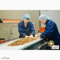 Грецкий орех опт, экспорт. Все виды фракций, фабричная упаковка, качество, г. Киев