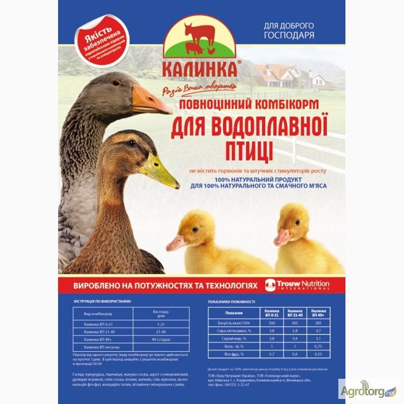 Состав корма для гусят