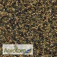 Костер и другие кормовые травы от 14 грн для сельхозживотных