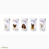 Bravecto - инсектоакарицидные таблетки Бравекто для собак