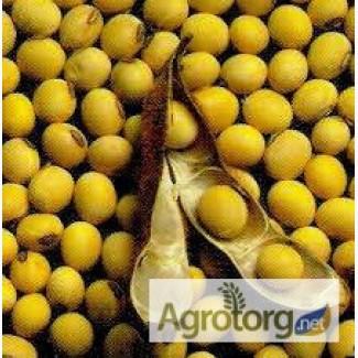 Закупівля сої від виробника. Вся Україна