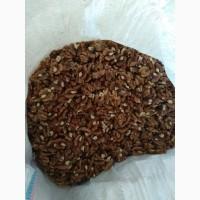 Walnuts ядро грецкого ореха