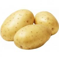 Картофель новый урожай 2019